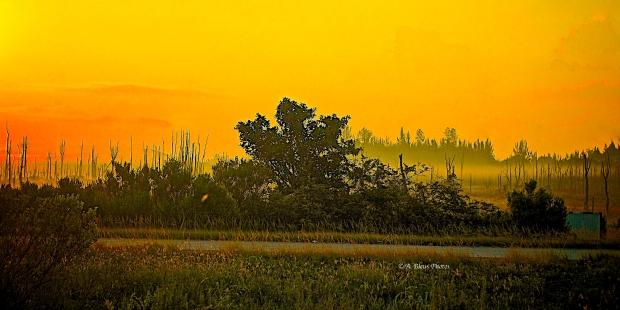 Hway US 27 Morning Fog & Sunrise