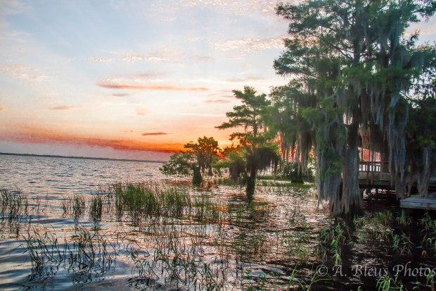 Blue Cypress Lake 2 Vero Beach, Florida
