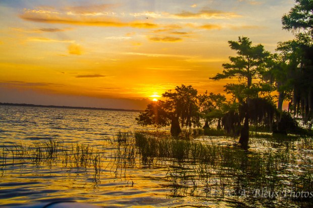 Blue Cypress Lake 3 Vero Beach, Florida
