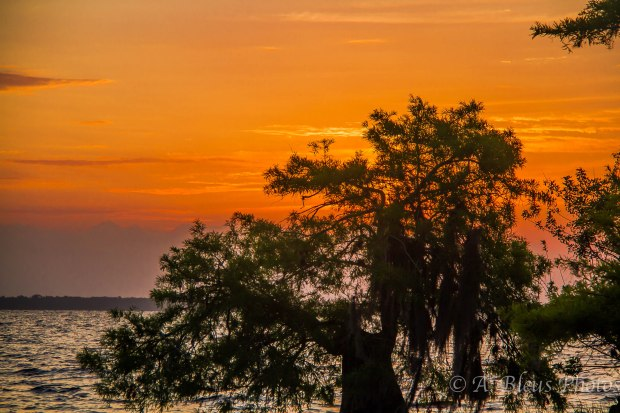 Blue Cypress Lake Vero Beach, Florida