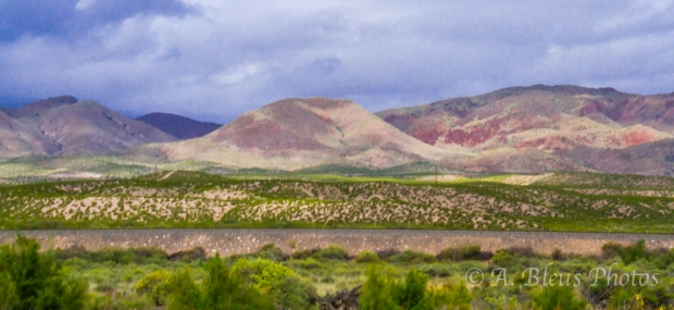 Panorama- Bosque del Apache, NM