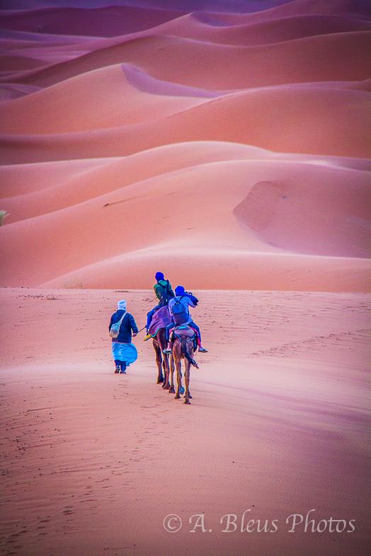 Caravan in the Sahara, Morocco_2331