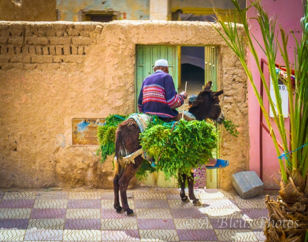 Daily Life in Morocco