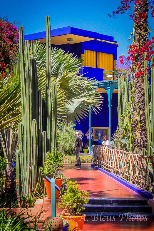 Jardin Majorelle Walkway, Marrakesh, Morocco