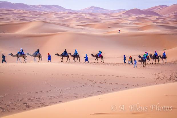 More Caravan in the Sahara, Morocco_2376