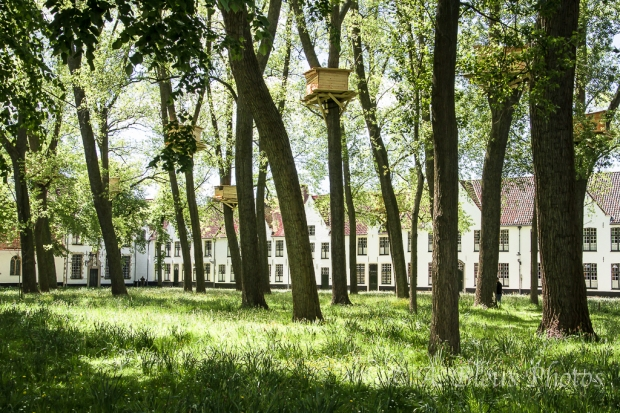 Beguinage of Brugges, Belgium