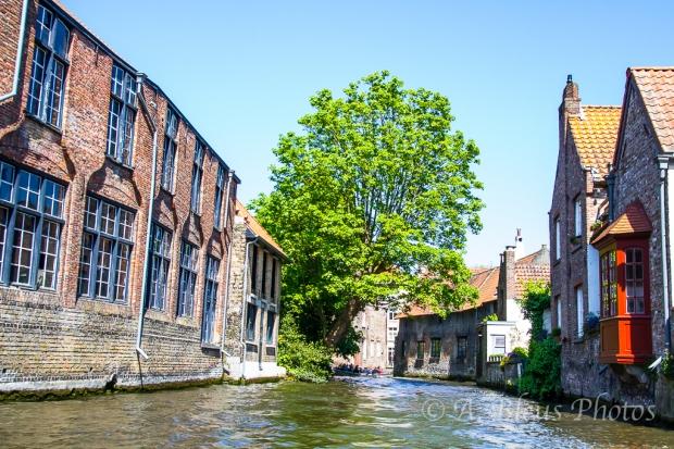 Riding Canal in Brugge, Belgium