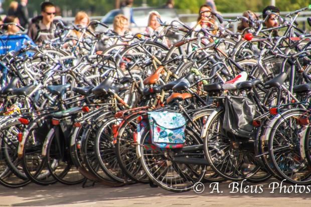 Bikes, Bikes, Bikes, Amsterdam
