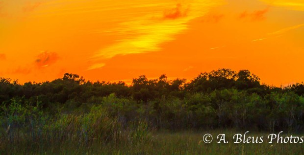 Sunset at Everglades National Park, Florida - MG_2922