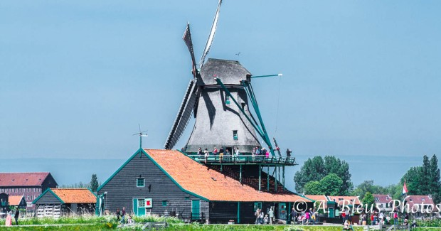 Zannse Schans Windmill MG_9248, Holland