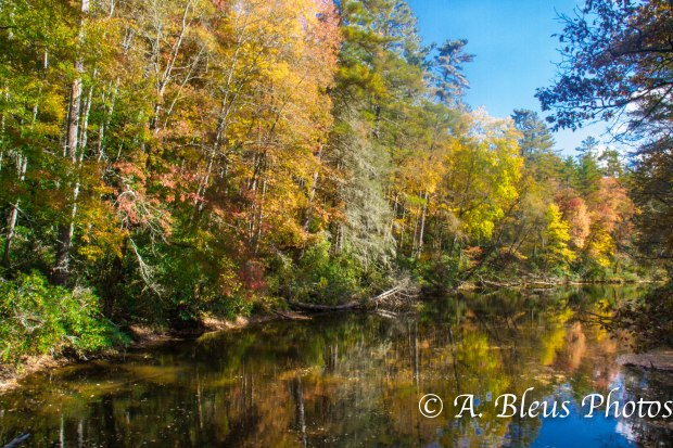 Fall colors of North Carolina MG_9618