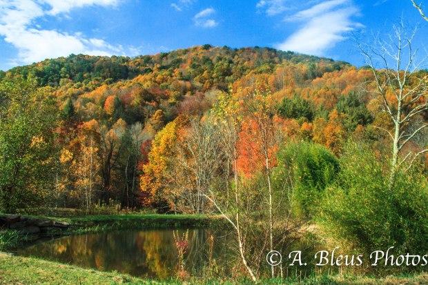Fall colors of North Carolina MG_9681