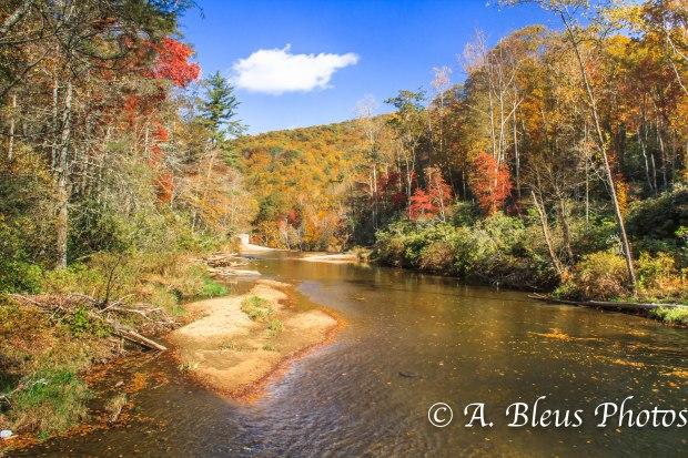 Fall colors of North Carolina MG_9728