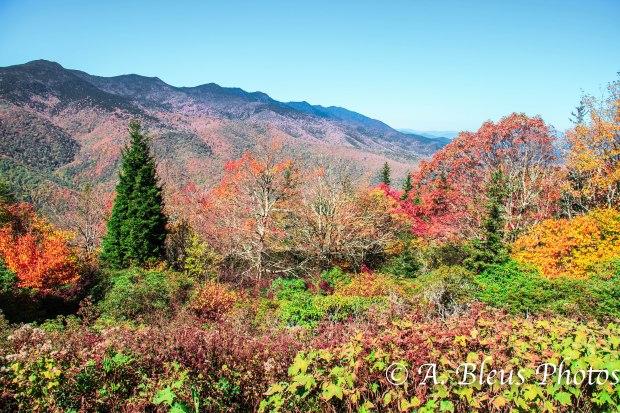 Graet Smoky Mountains National Park, North Carolina MG_9408