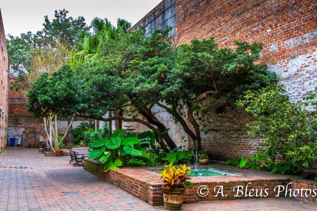 Courtyard at jean Lafitte National Hist. Park Museum, New Orleans, Louisiana, MG_9749