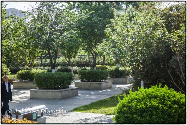 A Parc in Xian, China