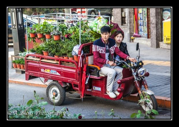 Mobile Nursery Xian, China