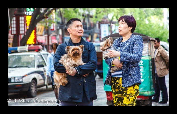 Muslim Quarter Couple with their Dogs, Xian.jpg
