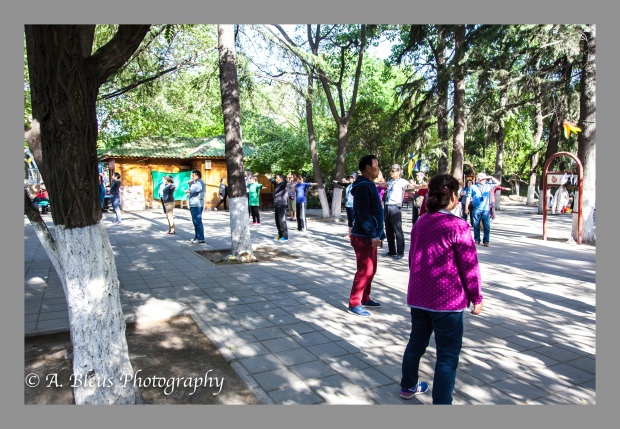 Tai Chi Daily Exercise, Xian-2
