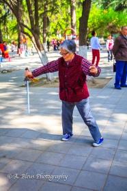 Tai Chi Soloist at Xingqing Park, Xian-4