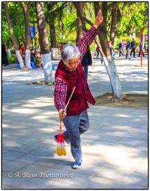 Tai Chi Soloist at Xingqing Park, Xian-5
