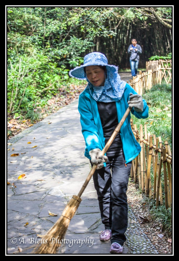 a-stylish-sweeper-chengdu