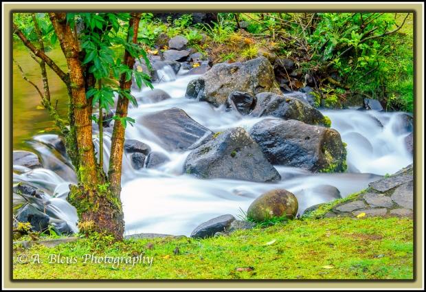 stream-at-bosque-de-paz-lodge-costa-rica