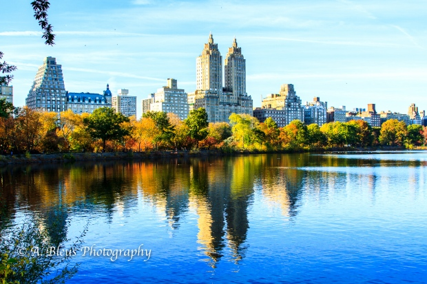 building-facades-reflection-viewed-from-central-park-mg_0988