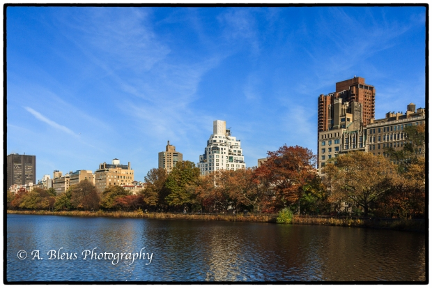 building-facades-viewed-from-central-park-mg_0943