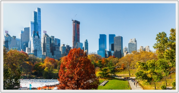 central-park-and-manhattan-skyline-ny-mg_1207