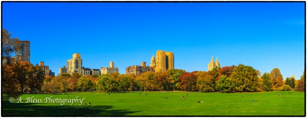 sheep-meadow-central-park-ny-mg_1221