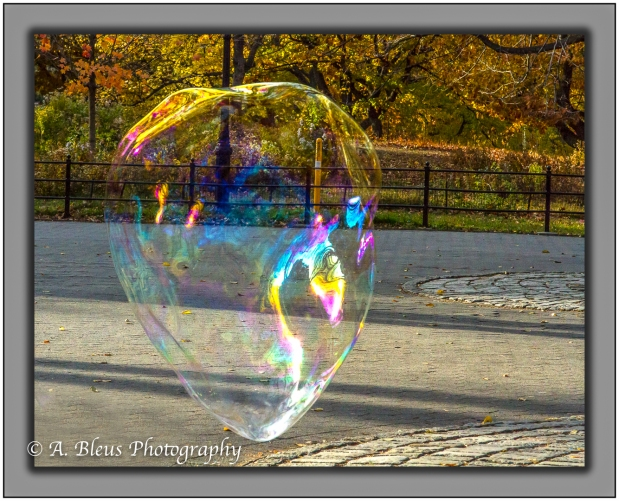 soap-bubbles-in-central-park-ny-mg_1363-2