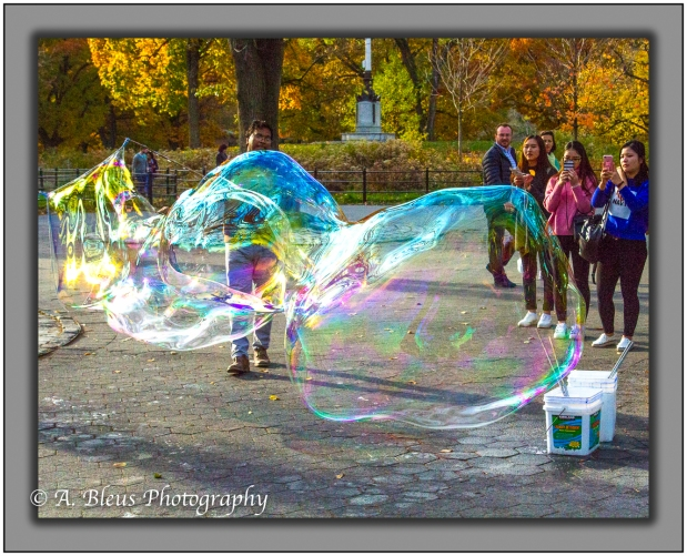 soap-bubbles-in-central-park-ny-mg_1363