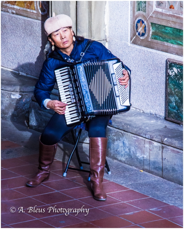 the-accordionist-central-park-ny