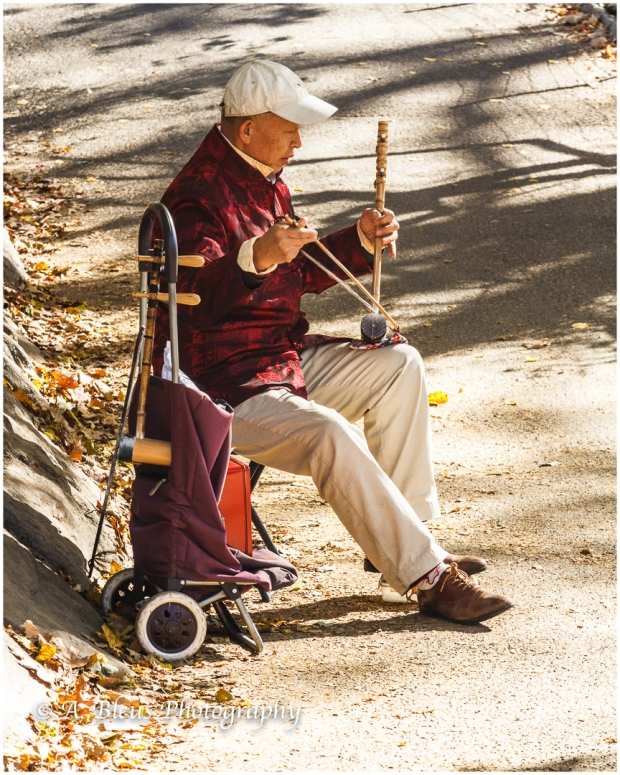 the-erhu-player-central-park-ny