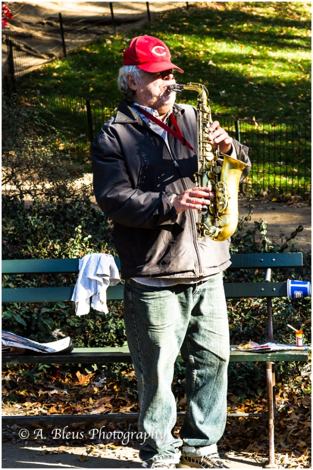 the-saxophonist-central-park-ny
