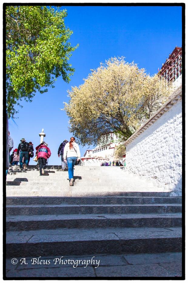 walking-the-steps-of-potala-palace-lhasa-mg_3718-2