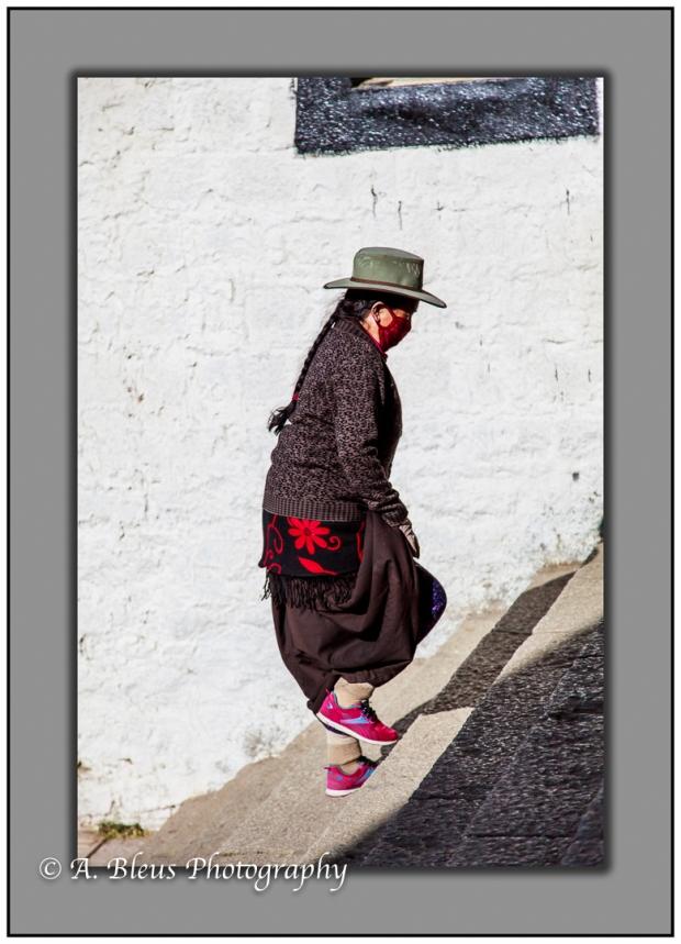 walking-the-steps-of-potala-palace-lhasa-mg_3718