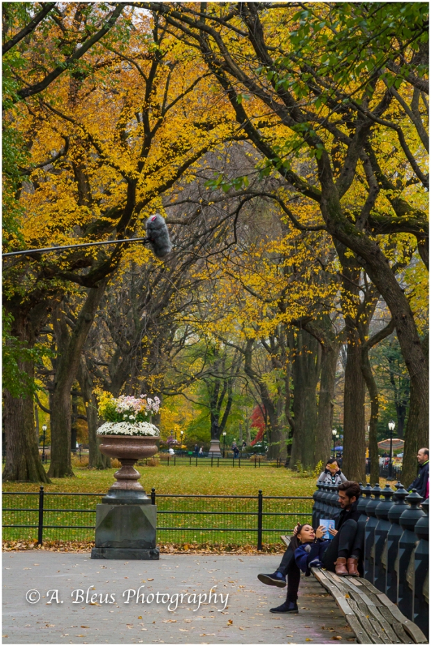 scene-from-a-film-production-central-park-ny-mg_1422
