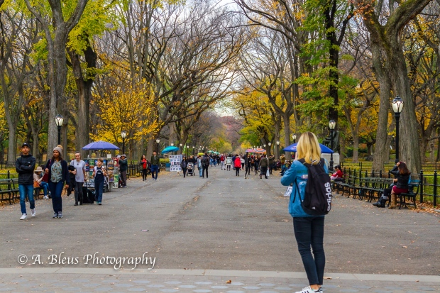 the-mall-central-park-mg_1440