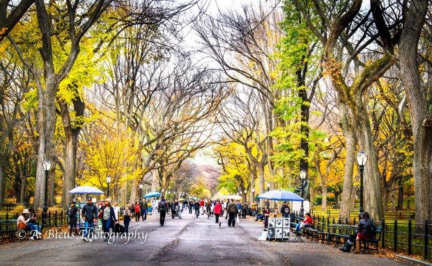 the-mall-central-park-ny-mg_1424-2