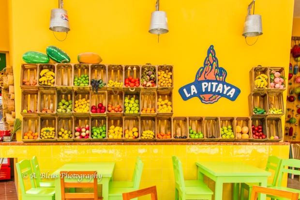 la-pitaya-costa-maya-mg_5394