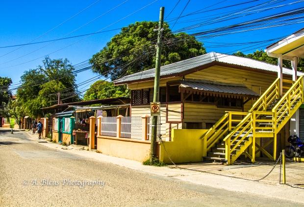 street-dwelling-roatan-honduras-mg_5522-2