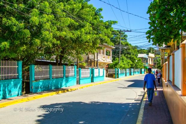 street-dwelling-roatan-honduras-mg_5522-3
