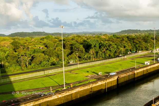 plush-forest-mountain-view-panama-canal-mg_5850