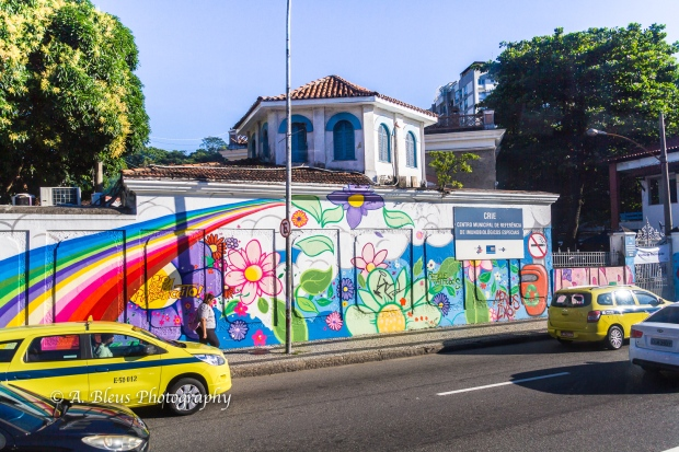 Graffiti, Street Arts of Rio MG_8447-2
