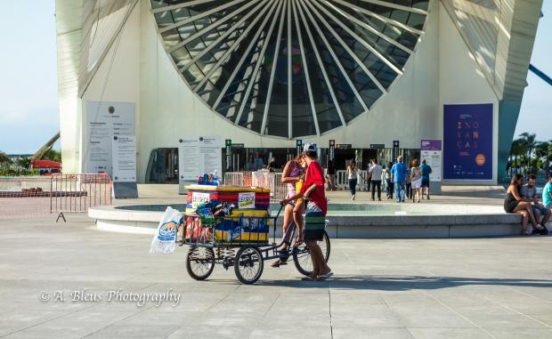 The Museum of Tomorrow, Rio de Janeiro DSC_04288-3