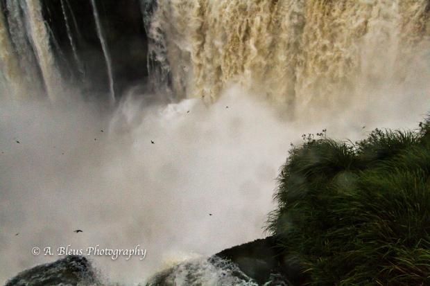Iguazu Falls Argentine side MG_9636-2