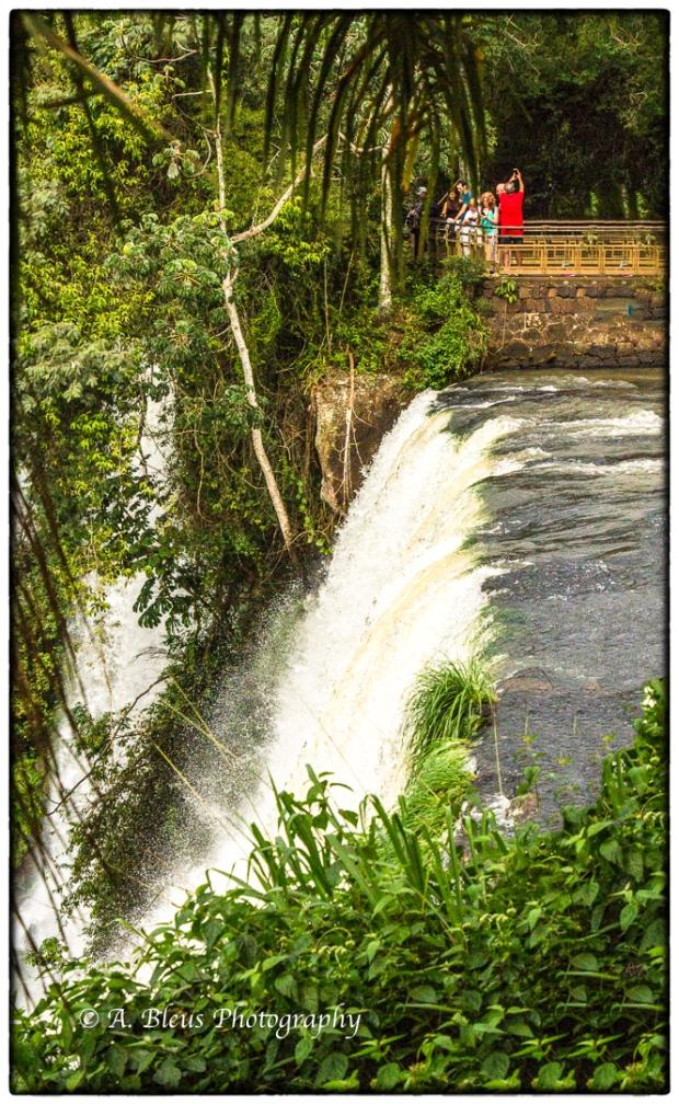 Iguazu Falls Argentine side MG_9808-3