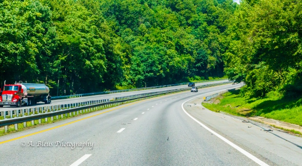 Driving the South Carolina Highway